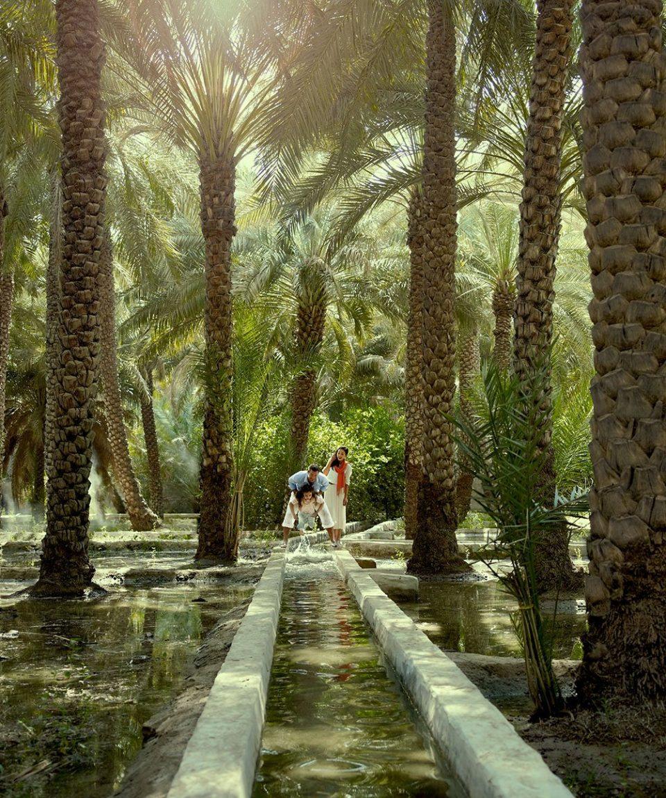 i13-Al-AinOasis